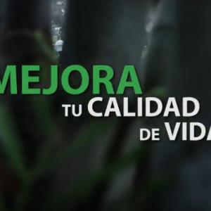 Veranda - Spot 2019